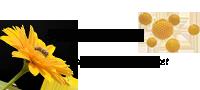 گرده گل