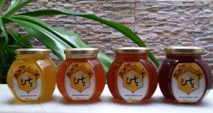 عرضه انواع عسل
