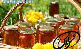 انواع عسل کوهستان