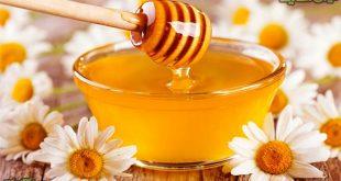 بهترین قیمت عسل