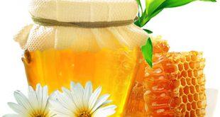 فروش عمده عسل
