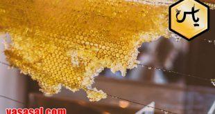عمده فروشان عسل